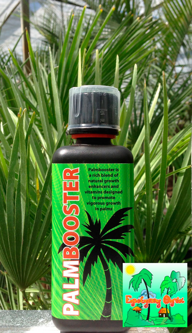 PALM BOOSTER